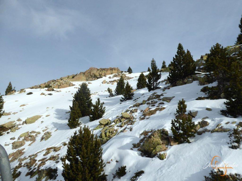 P1220046 1 1024x768 - Cerler esperando el invierno.