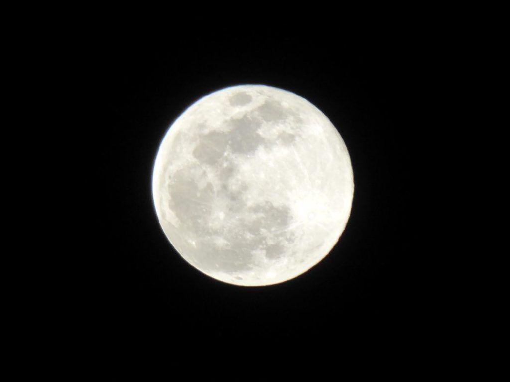 P1230202 1024x768 - Luna Llena de nieve ... Cerler