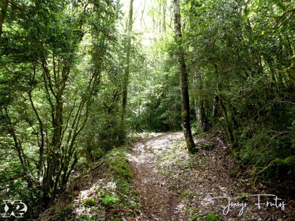 P1240423 1024x768 - Super Conques Btt Valle de Benasque.
