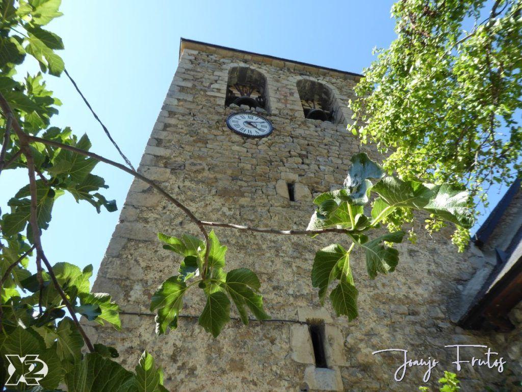 P1250819 1024x768 - Basa La Mora - Saravillo.