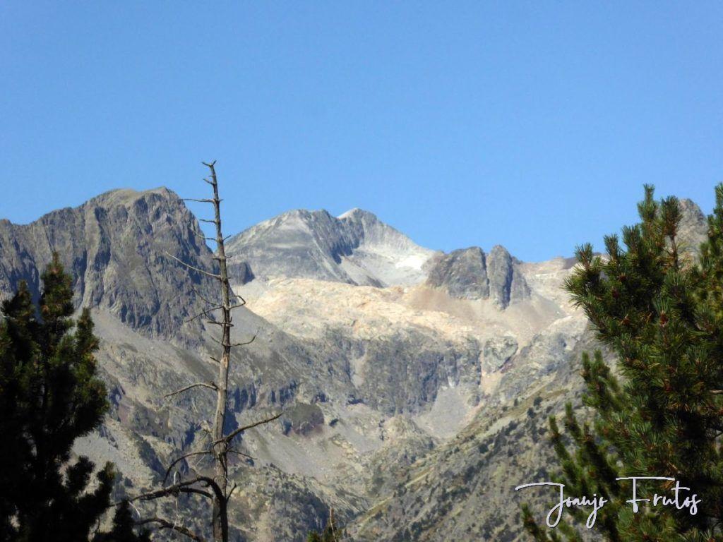 P1280886 1024x768 - Un día en La Besurta, Valle de Benasque.
