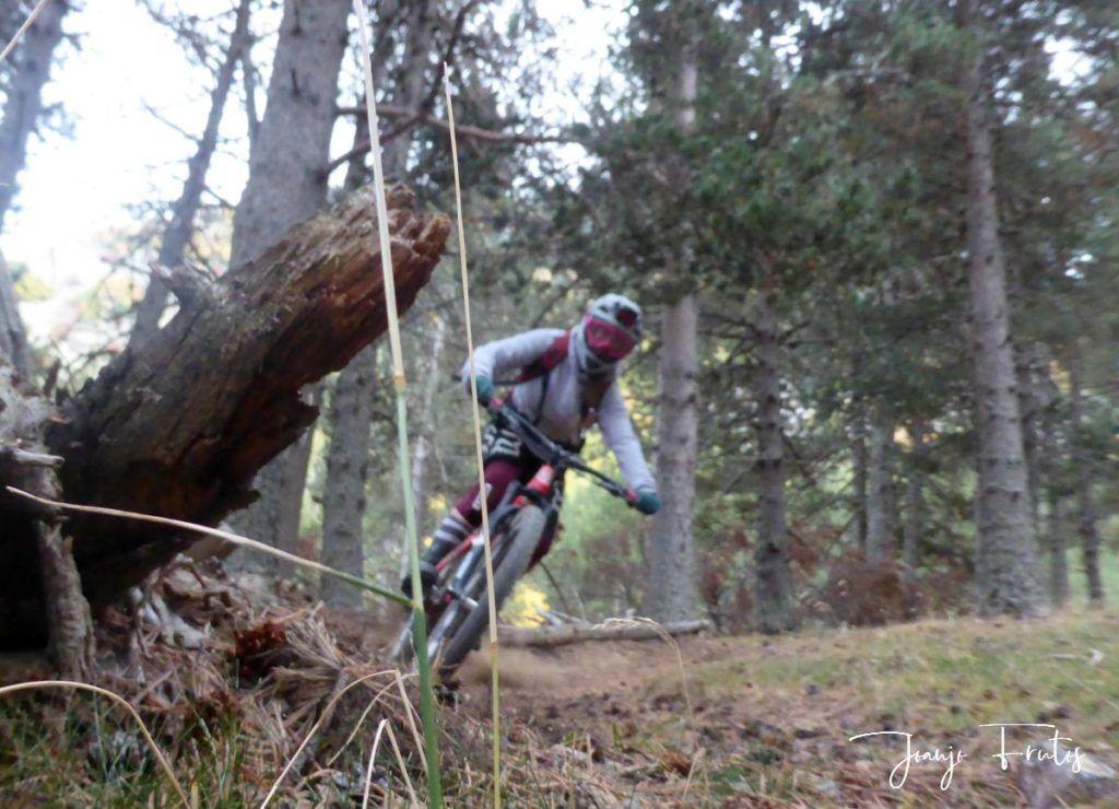 P1290698 1024x740 - Bike Park en Cerler ...