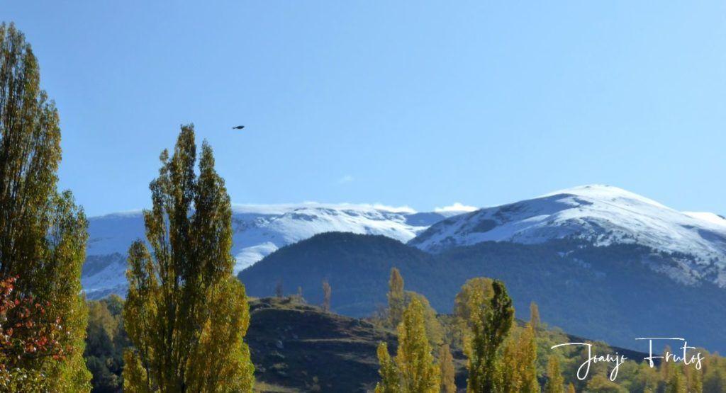 P1300033 1024x555 - Y pasaron las nevadas en el Valle de Benasque.