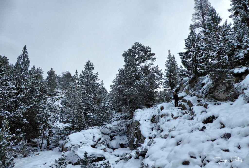 P1300310 fhdr 001 1024x691 - Tarda pero llega la nieve en el Valle de Benasque.