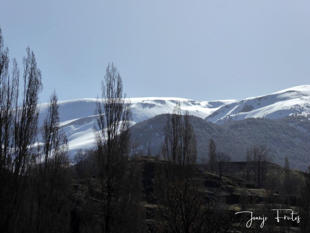 P1320017 1024x768 - Y va a volver a nevar en Cerler.