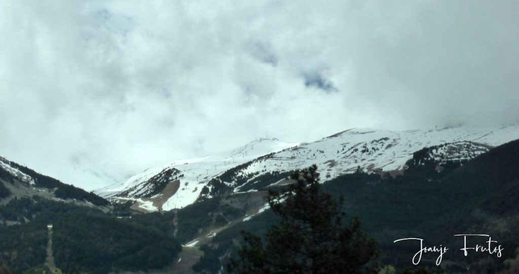 P1320916 1024x541 - Nevada finales abril20