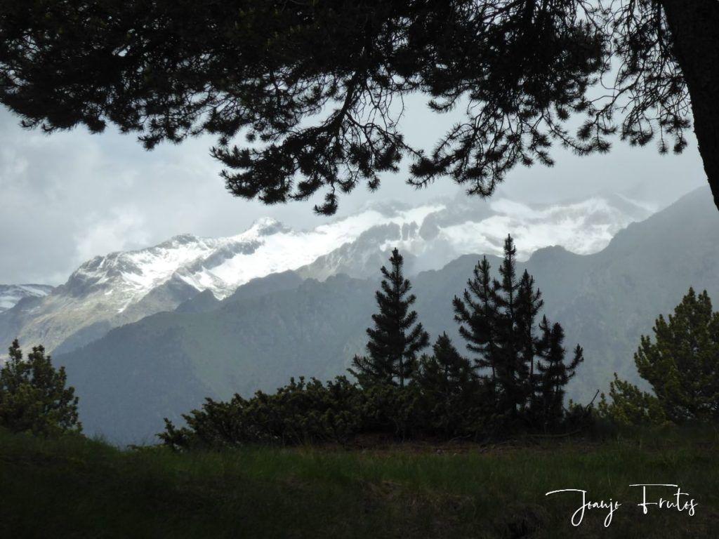 P1330492 1024x768 - Cerler Junio nevado con normalidad