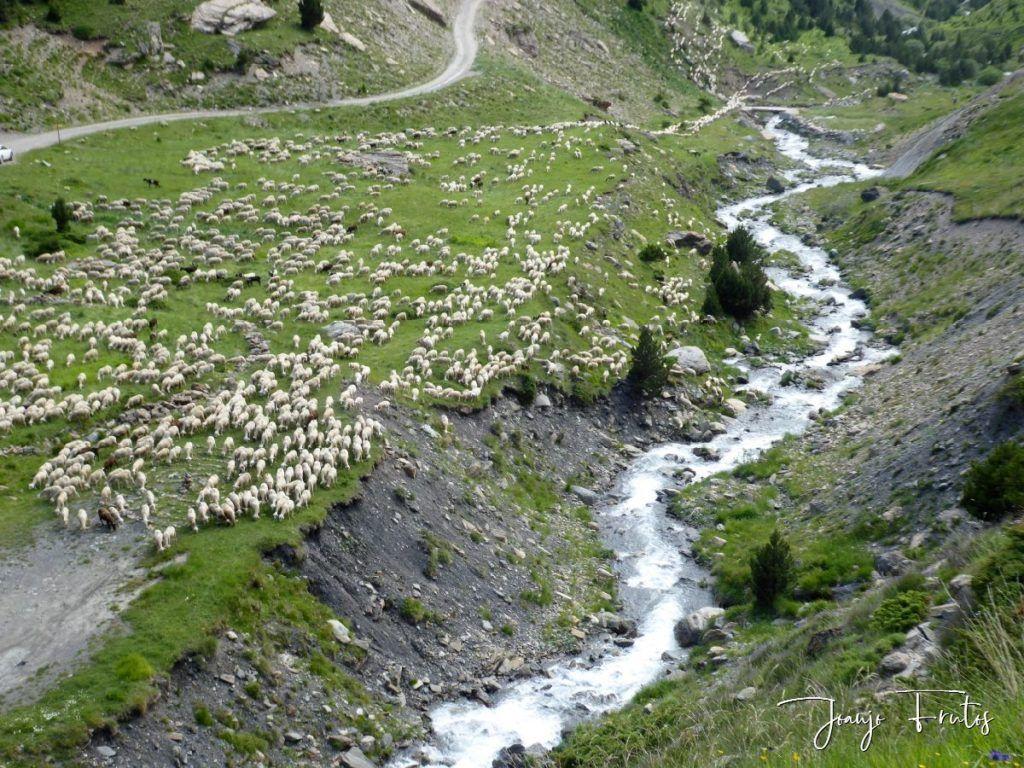 P1330638 1024x768 - Empezamos verano cascadas y setas