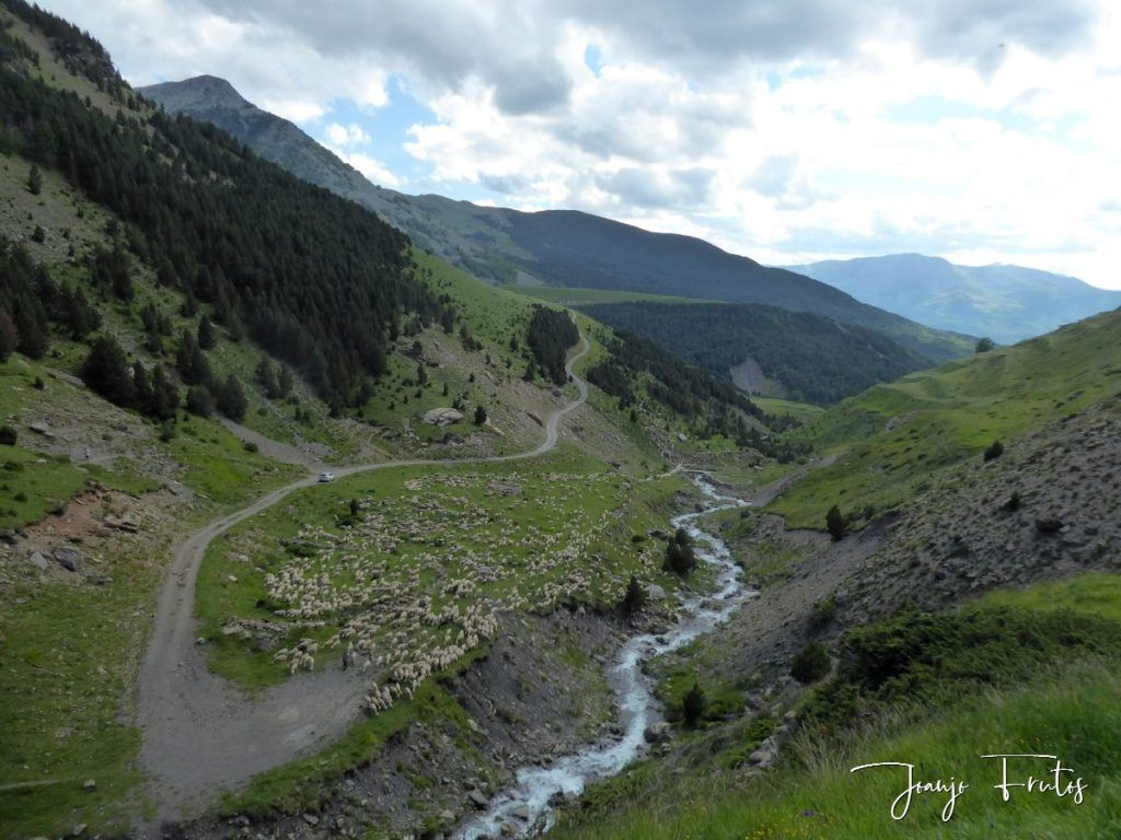 P1330639 1024x768 - Empezamos verano cascadas y setas