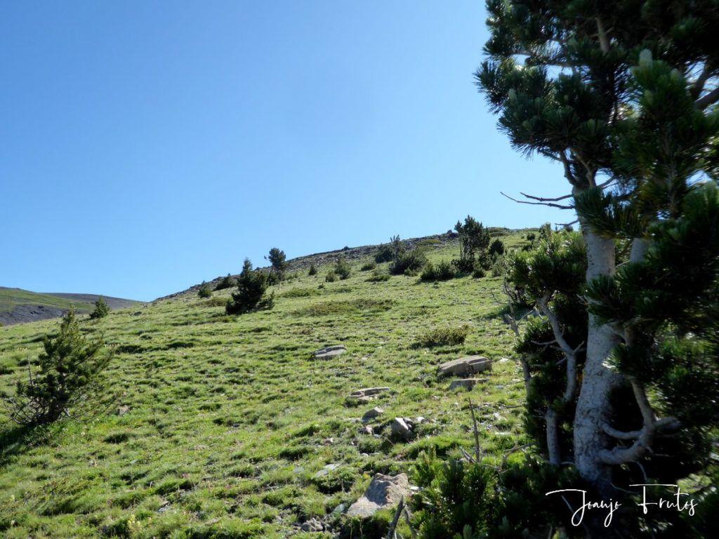 P1330758 1024x768 - Estibafreda pedaleando con vistas.