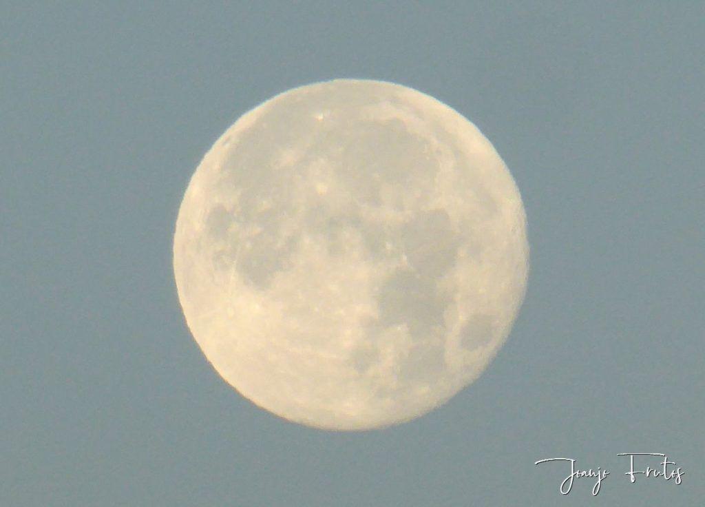 P1330790 1024x736 - Amanecer de Luna Llena de Julio.