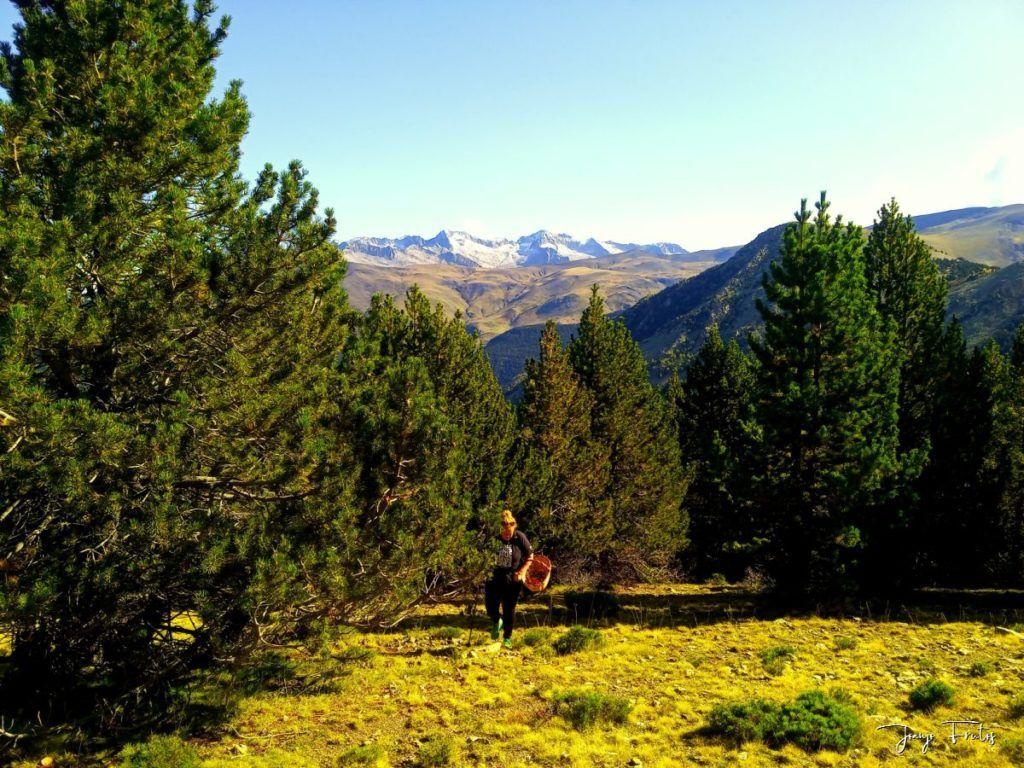 IMG 20200920 110842 1024x768 - Paseando por Cerler Estación de Esquí.