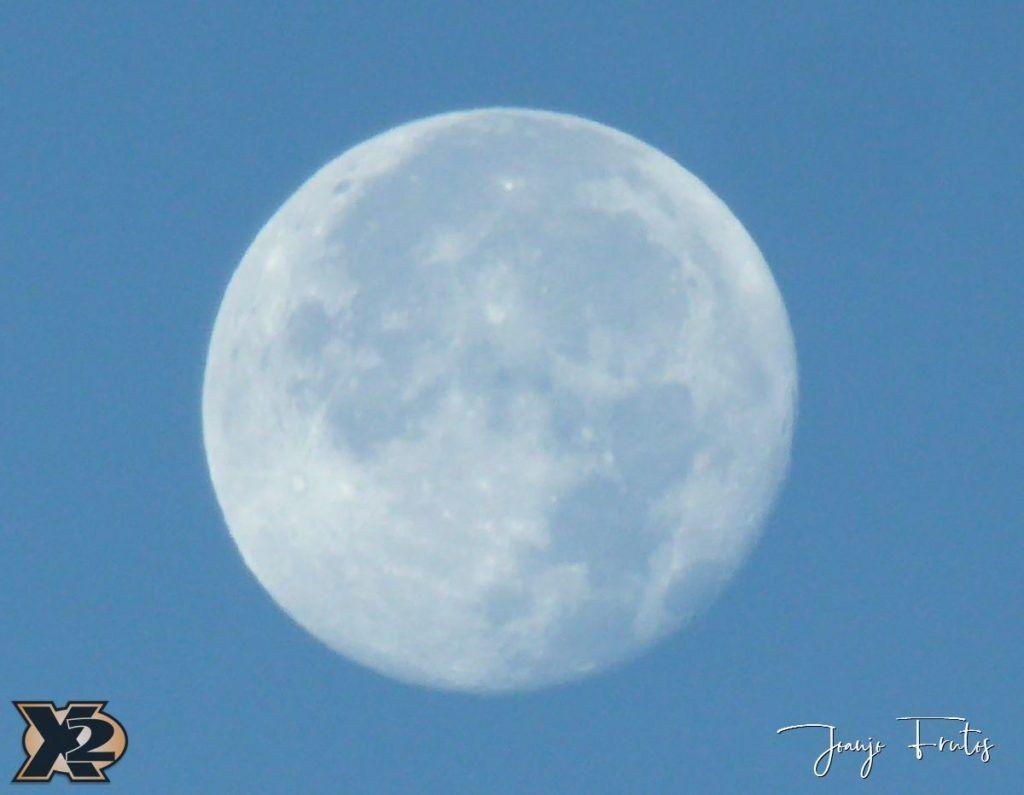 P1350787 1024x795 - Hojas de otoño con Luna Llena.