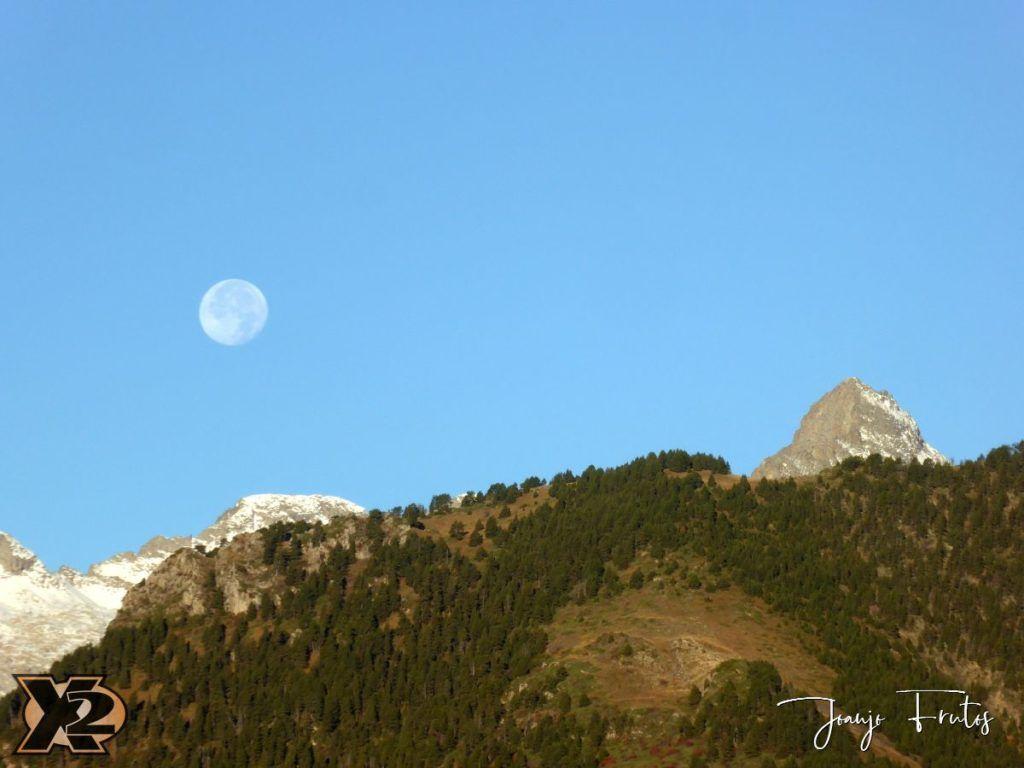 P1350790 1024x768 - Hojas de otoño con Luna Llena.