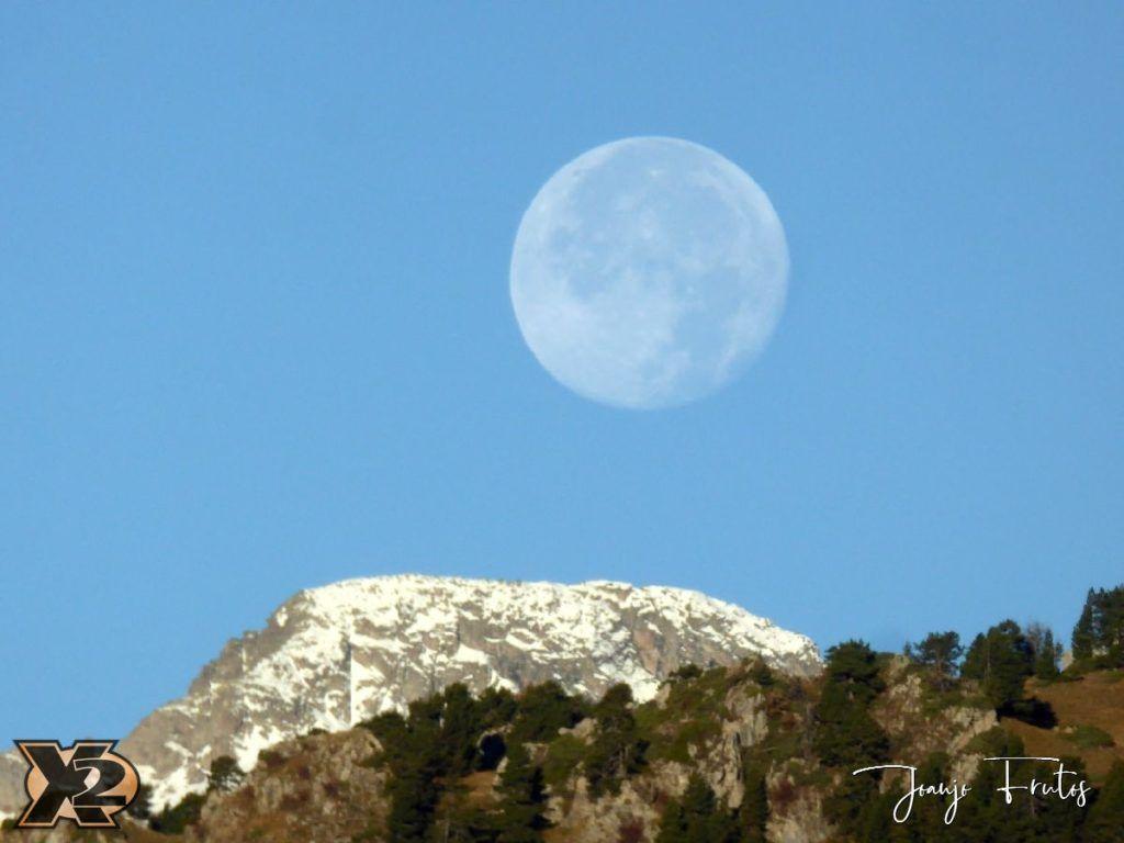 P1350793 1024x768 - Hojas de otoño con Luna Llena.