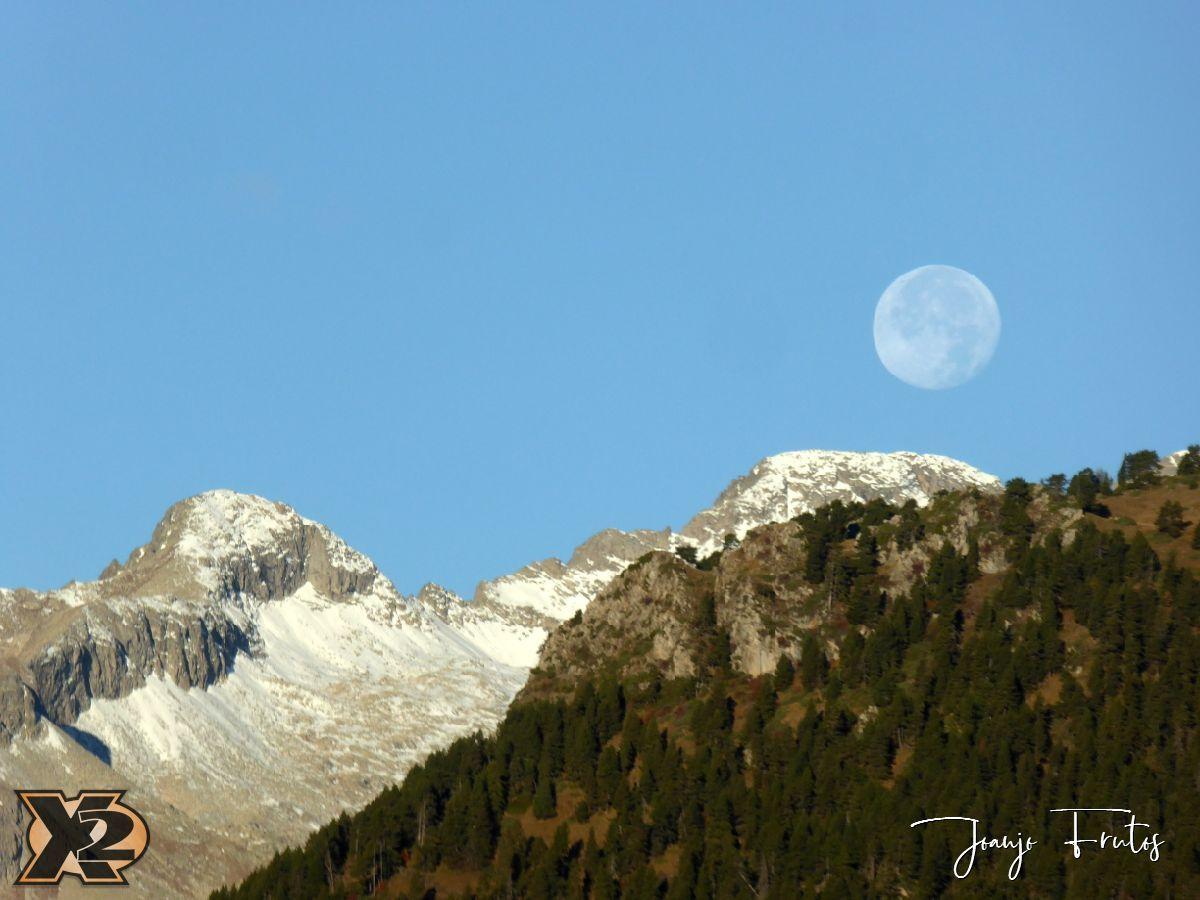 P1350794 - Hojas de otoño con Luna Llena.