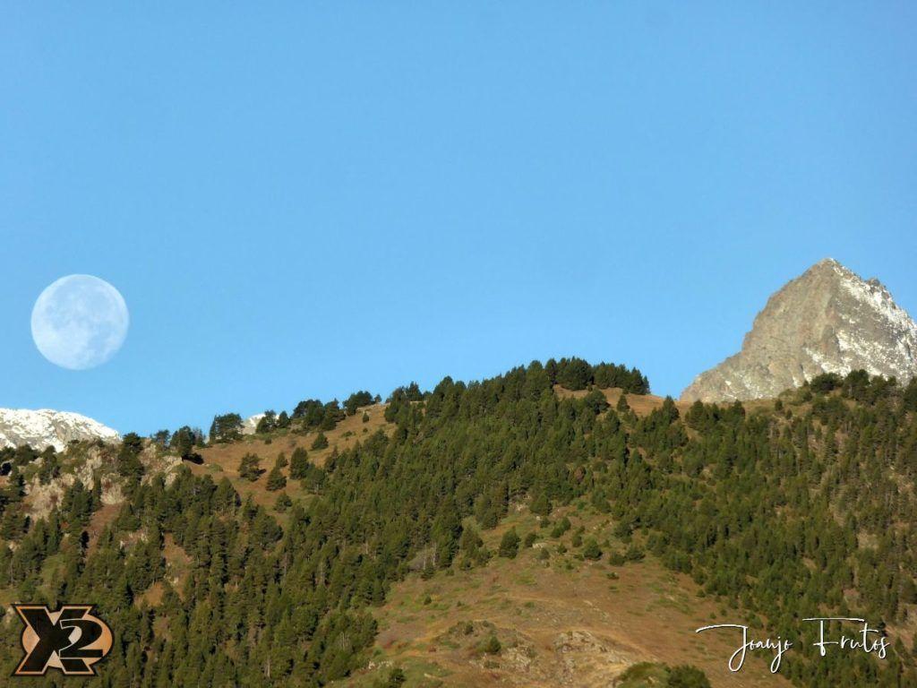 P1350795 1024x768 - Hojas de otoño con Luna Llena.