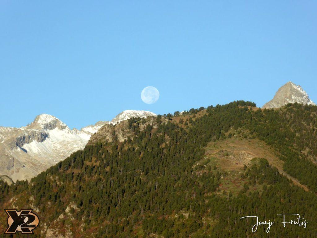P1350796 1024x768 - Hojas de otoño con Luna Llena.