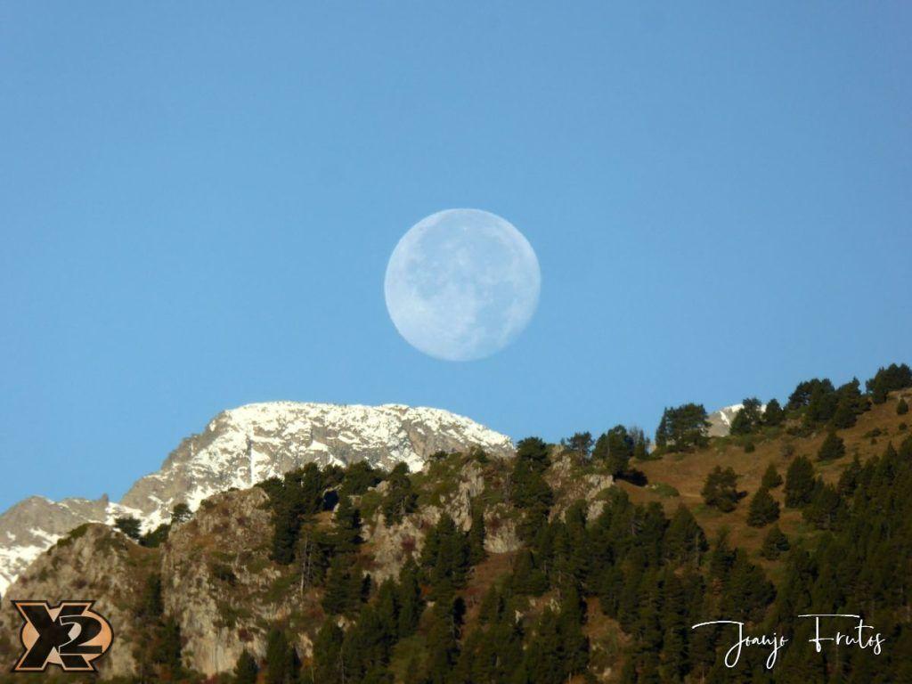 P1350797 1024x768 - Hojas de otoño con Luna Llena.