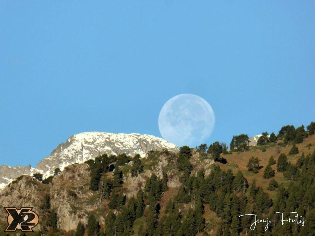 P1350802 1024x768 - Hojas de otoño con Luna Llena.