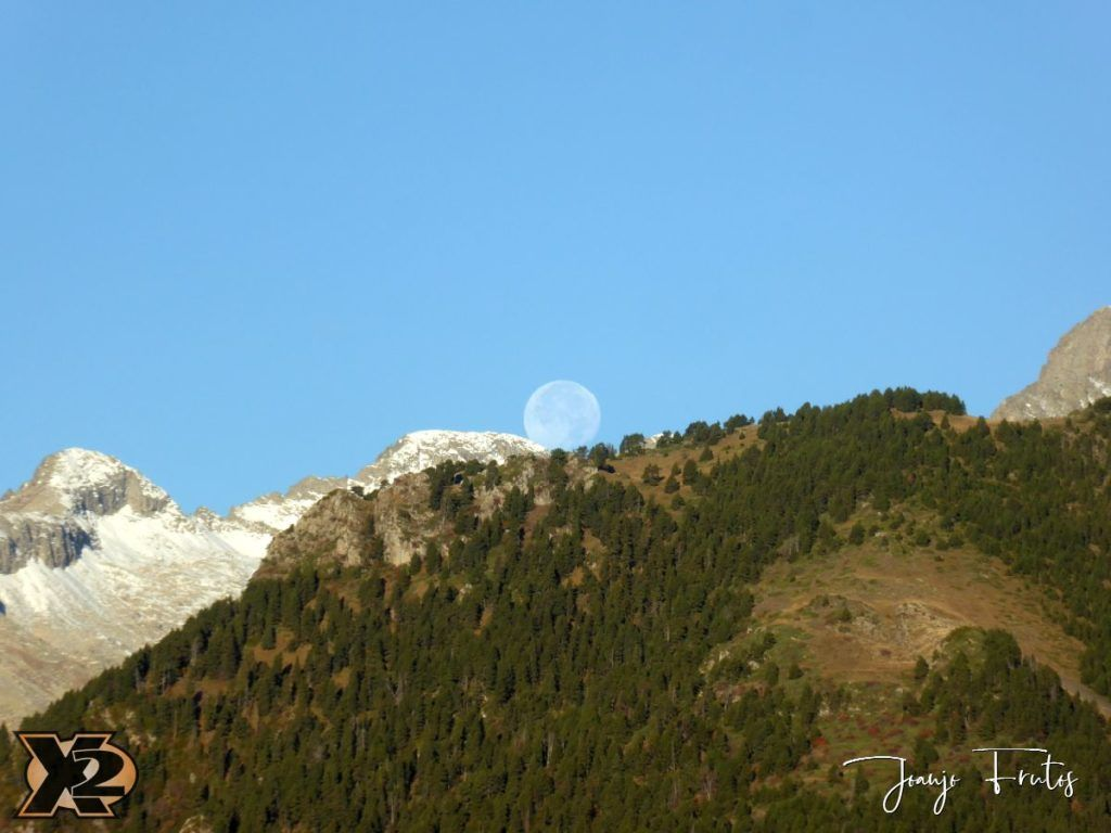 P1350803 1024x768 - Hojas de otoño con Luna Llena.