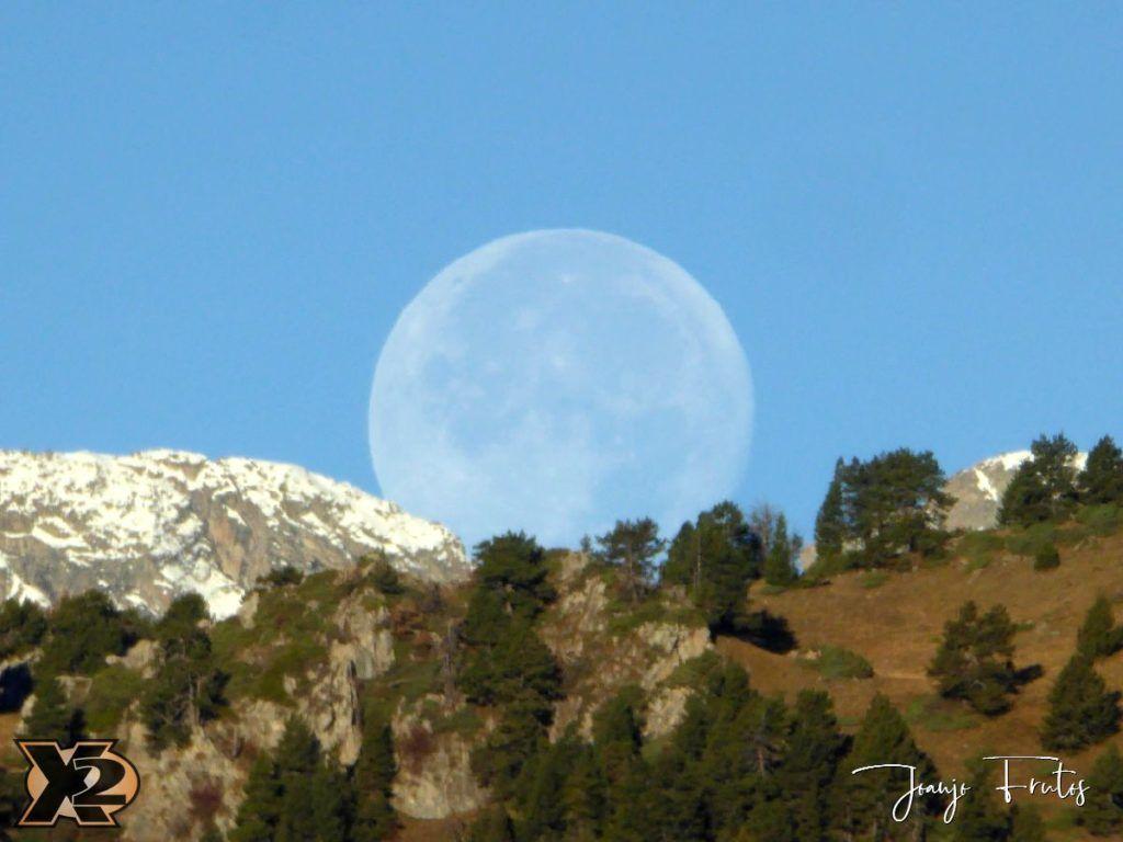 P1350805 1024x768 - Hojas de otoño con Luna Llena.