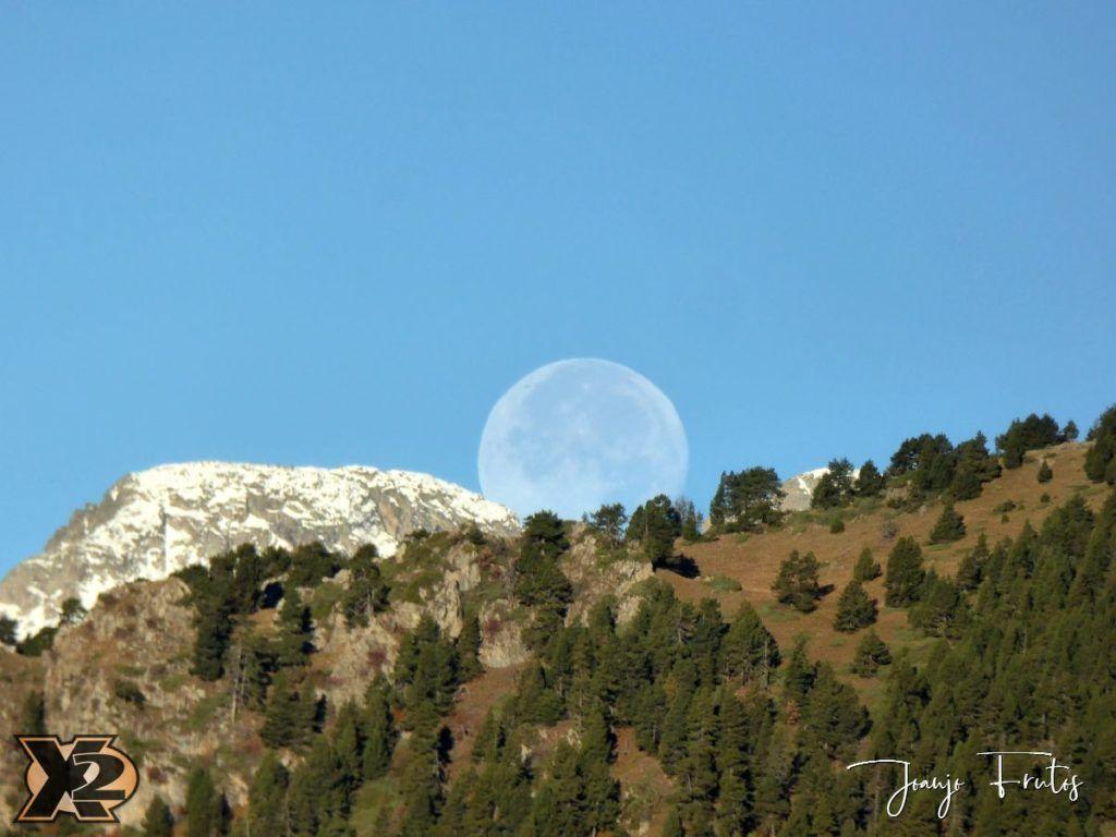 P1350807 1024x768 - Hojas de otoño con Luna Llena.