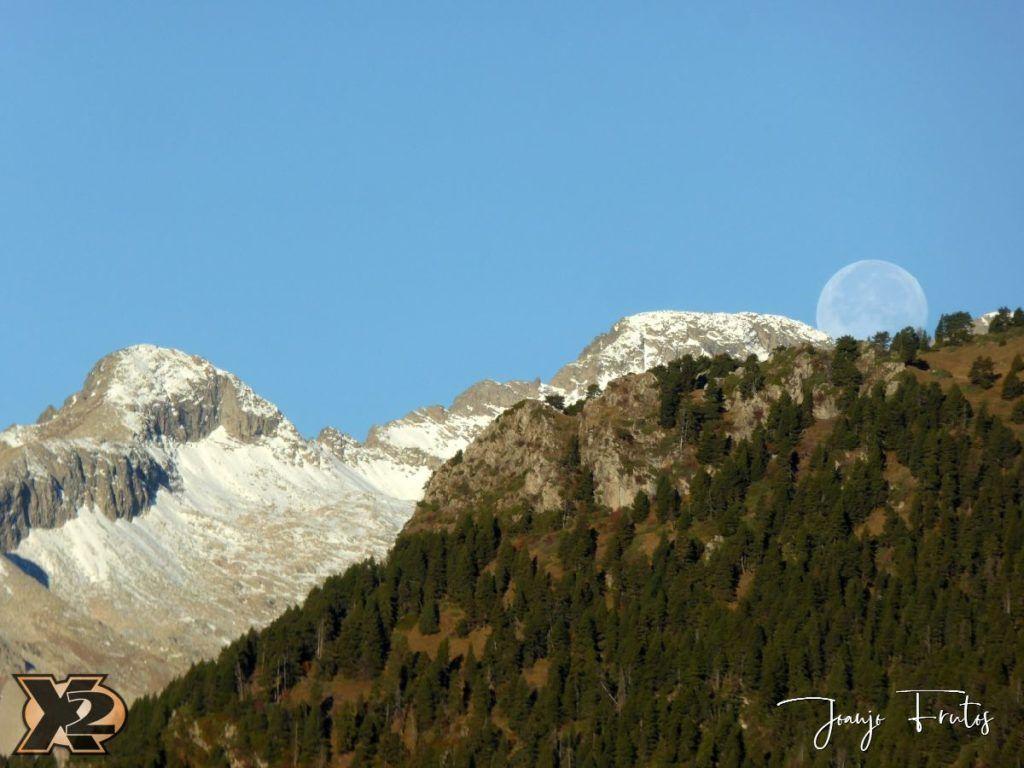 P1350808 1024x768 - Hojas de otoño con Luna Llena.
