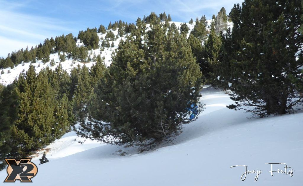 P1360955 1024x631 - ¿Filomena llegas al Pirineo?