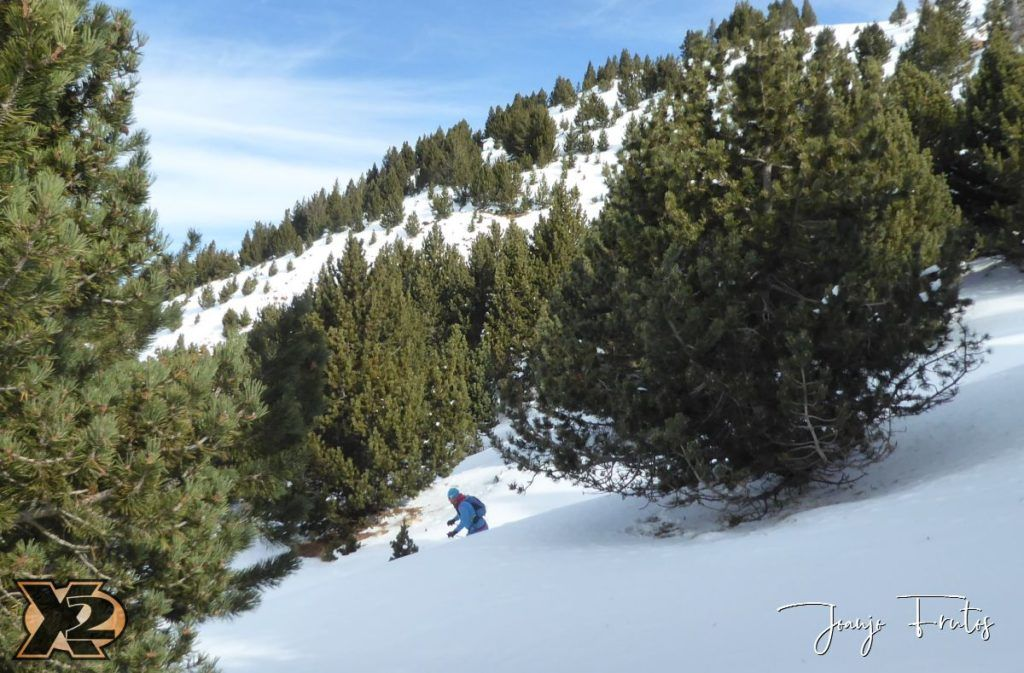 P1360956 1024x673 - ¿Filomena llegas al Pirineo?
