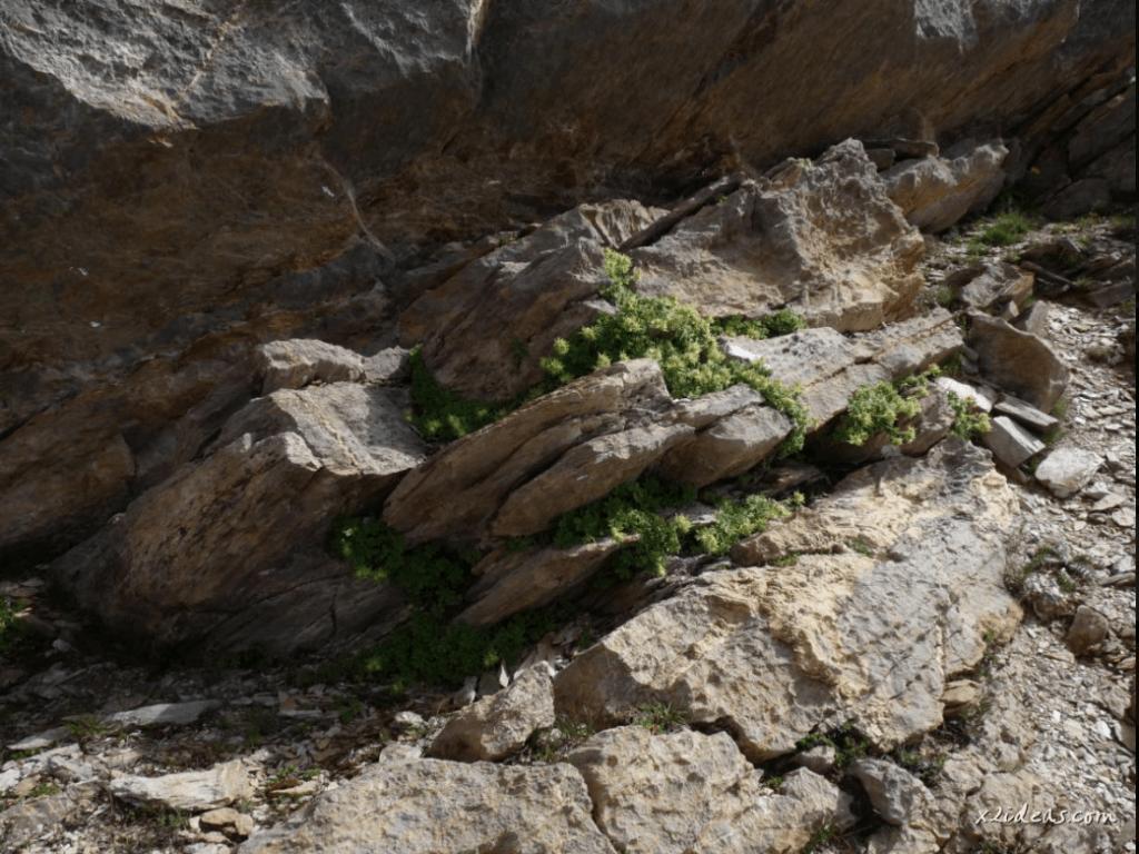 Captura de pantalla 2021 03 18 a las 19.38.27 1024x768 - Paseo por el pico Cibollés.