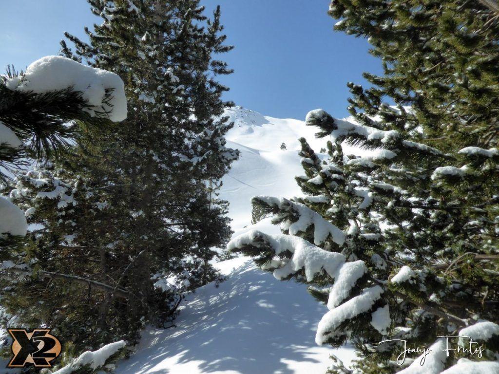 P1370800 1024x768 - Disfrutando la última nevada de Cerler