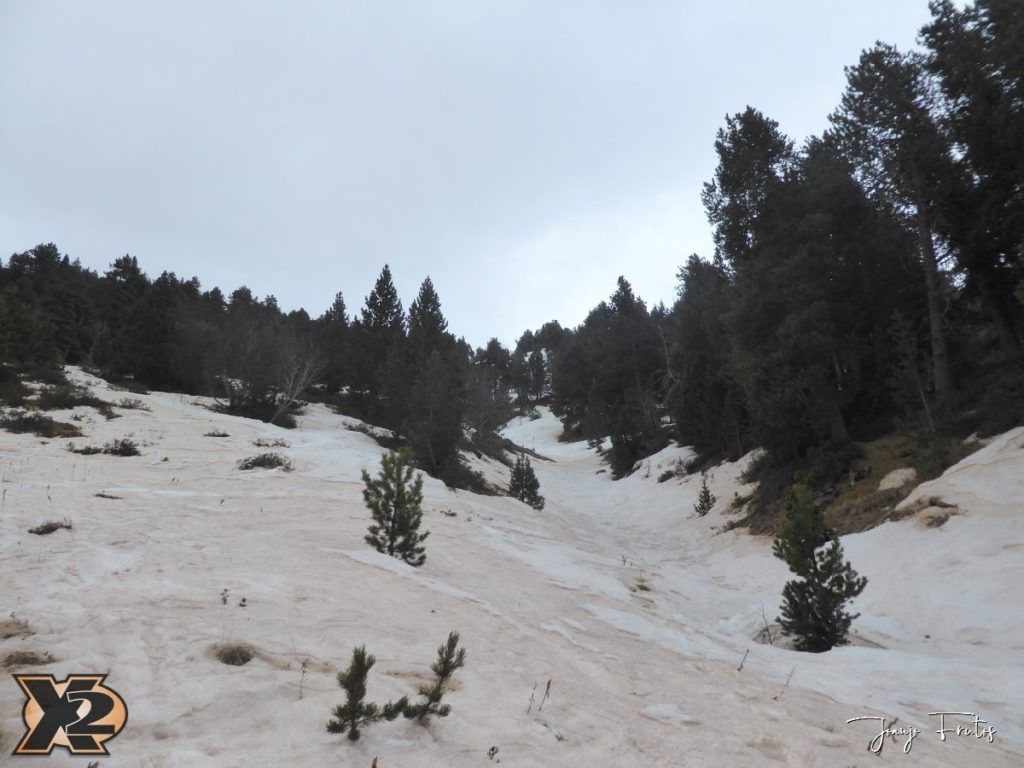 P1380272 1024x768 - Tocaba esquiar en Ardonés