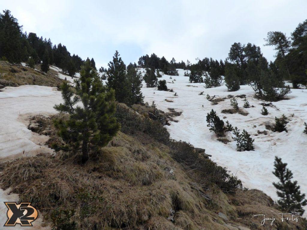 P1380277 1024x768 - Tocaba esquiar en Ardonés