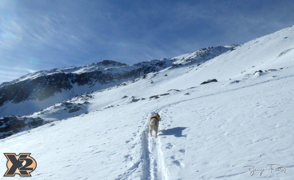 P1380533 1024x629 - Maladeta con nieve polvo.