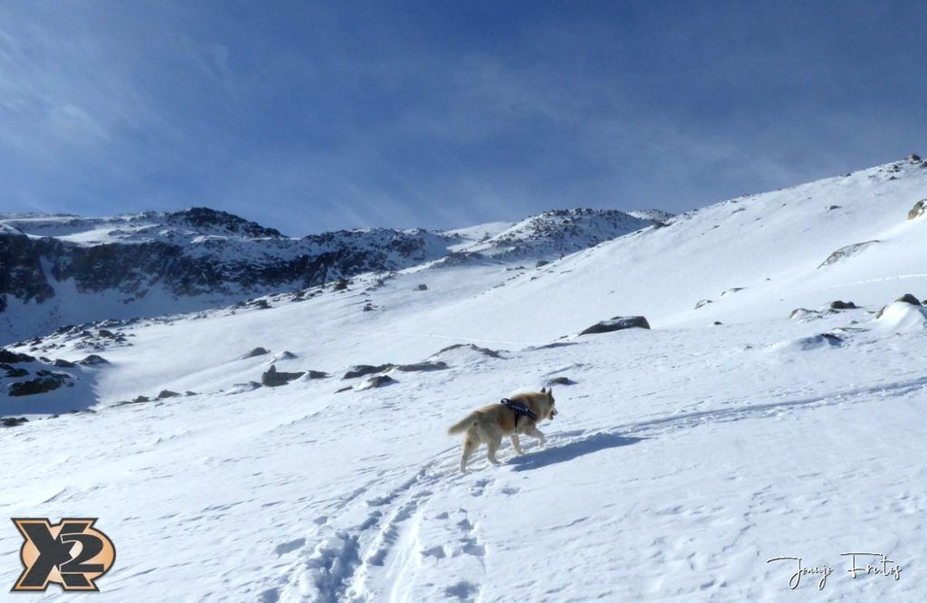 P1380535 1024x666 - Maladeta con nieve polvo.