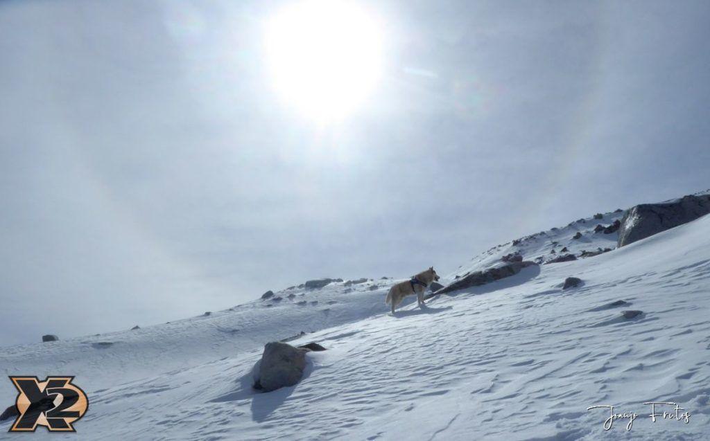 P1380550 1024x637 - Maladeta con nieve polvo.