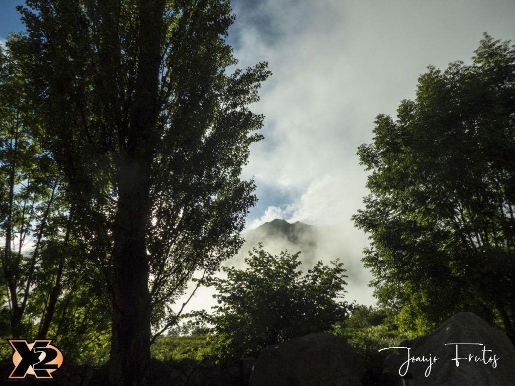 P1390142 1 1024x768 - Verbena con picos nevados