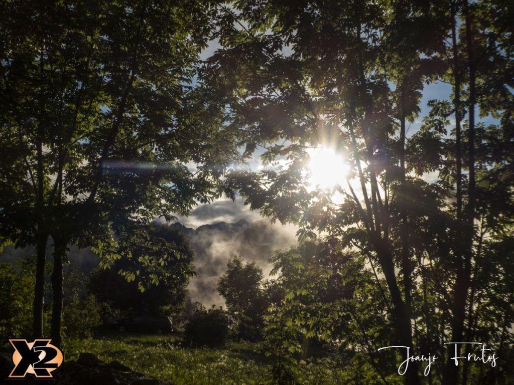 P1390146 1 1024x768 - Verbena con picos nevados
