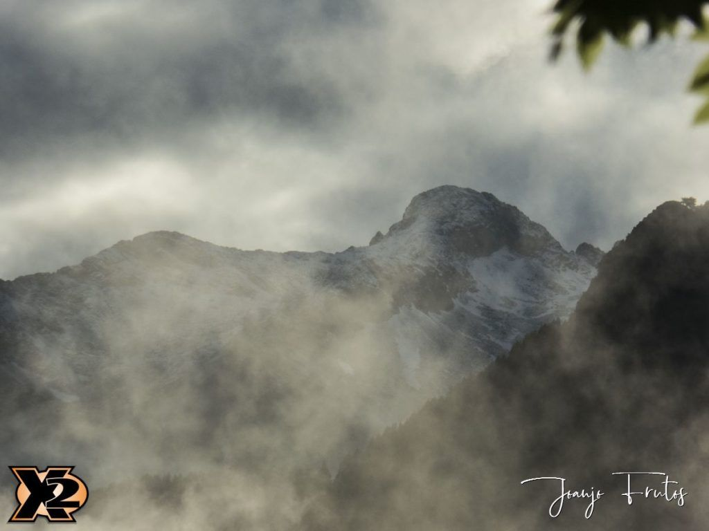 P1390147 1 1024x768 - Verbena con picos nevados