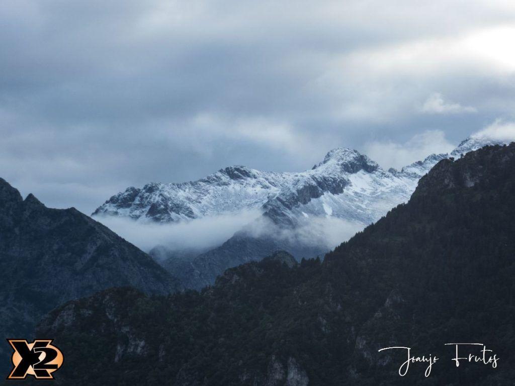 P1390178 1 1 1024x768 - Verbena con picos nevados
