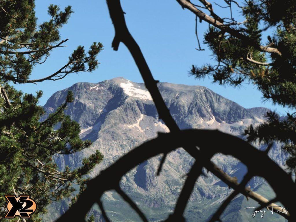 P1000330 copia 1024x768 - Fotografía en bosques de Cerler.
